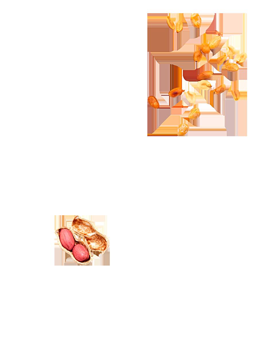 Cacahuètes grillées et salées Menguy's