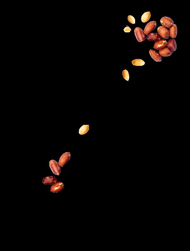 Cacahuètes à l'ancienne graines